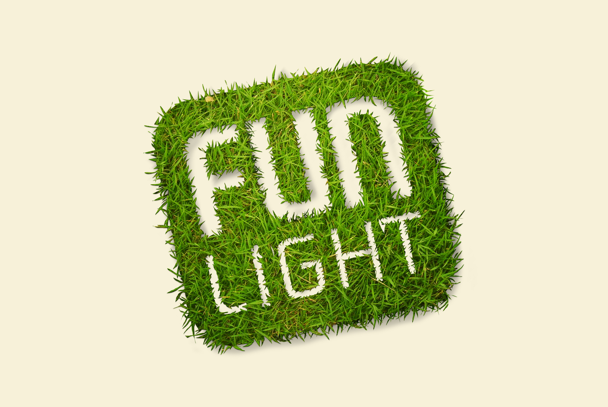 Fun Light Green 5 - Logo