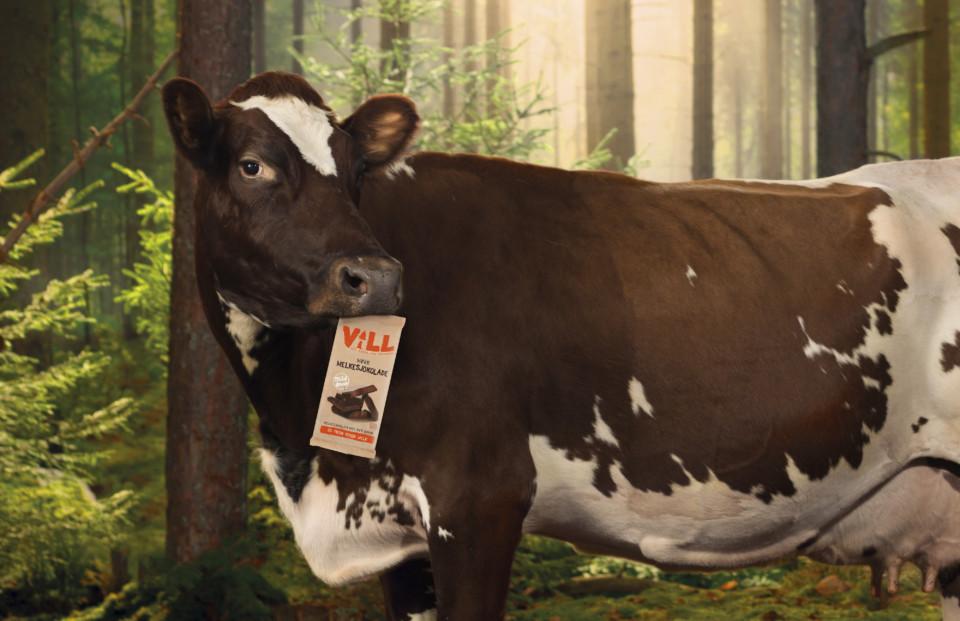 Nidar Vill cow - Header